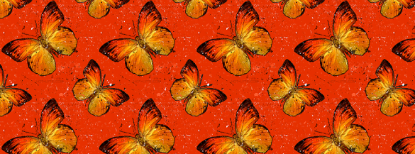 ilike2like.com facebook cover picture butterfly